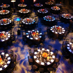 Gala-Dinner-DoN-Catering