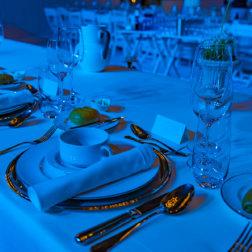 DoN-Catering-Wien-Tischgedeck_c_frankl24_veranstaltung_lifeball_2018
